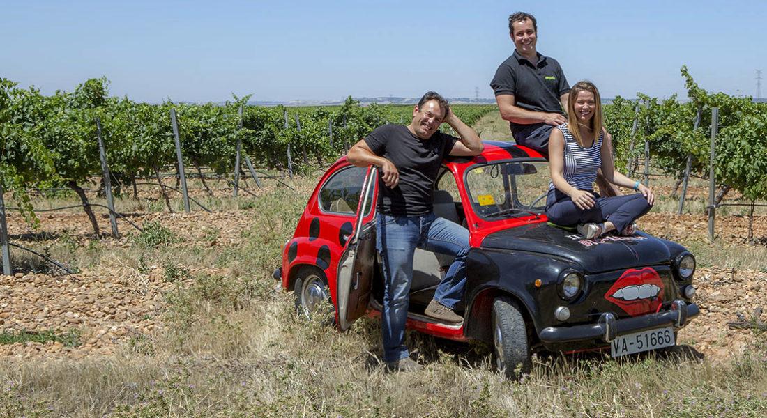 Vinos ecológicos, vinos orgánicos, vinos ecológicos
